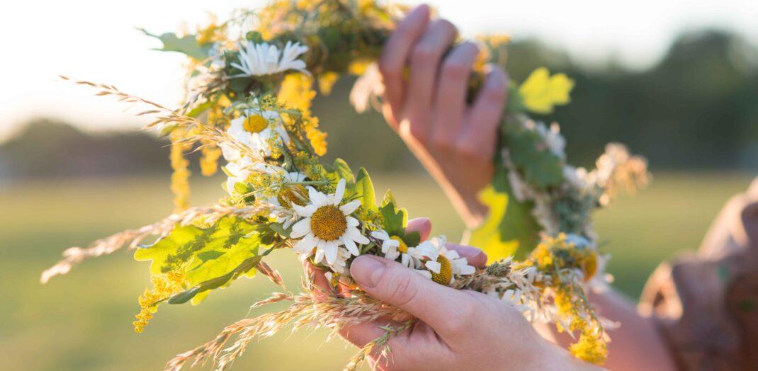 Närbild på händer som knyter en midsommarkrans en solig sommardag.
