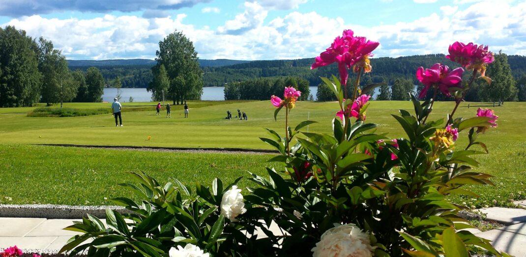 Närbild på blommor, samt vy över golfbana.